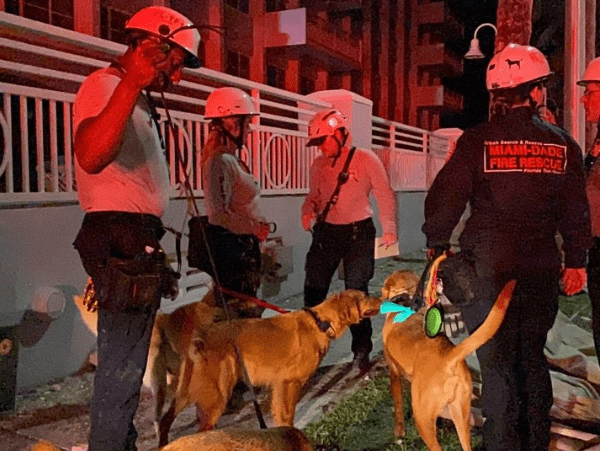 [Videos] Collapse In Miami: At Least One Dead And 30 Missing